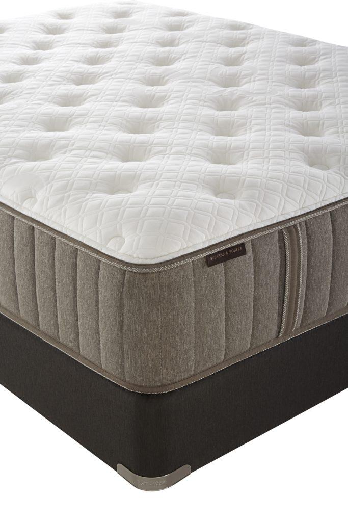 Oak Terrace Plush My Sleep Mattress Stores